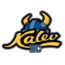 BC Kalev II